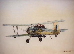 guild of aviation artists Swordfish