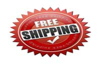 free worldwide shipping on all paintings
